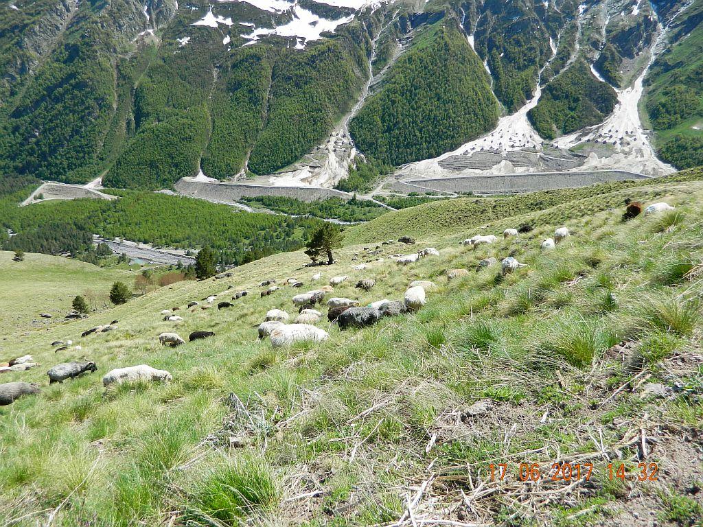Вид с на ущелье, лавинные заграждения
