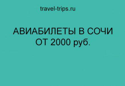Москва Сочи прямые рейсы от 2000 руб.