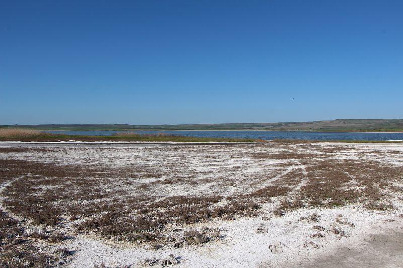 Солёное озеро. Берег.
