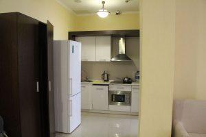 Между спальней и залом имеется небольшая кухня. Со встроенными микроволновкой, плитой и посудомоечной машиной