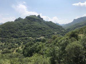 Дорога к Шоанинскому храму